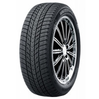 Roadstone WinGuard ice Plus 245/45 R18 100T XL